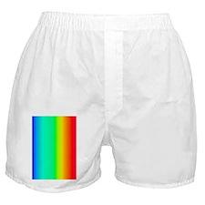 Visible Specturm Boxer Shorts