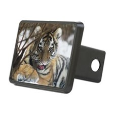 january 2012 Hitch Cover