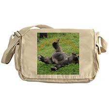 cover final Messenger Bag