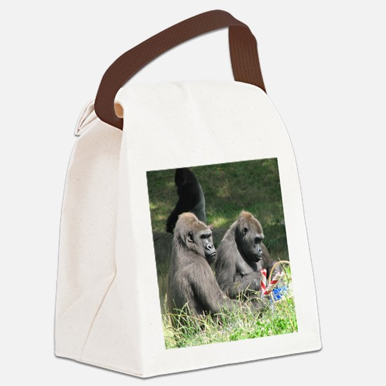 jan 2 Canvas Lunch Bag
