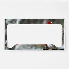 CdMW5.78x3.207 License Plate Holder