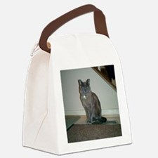 Grate_Jaspurr 1 Canvas Lunch Bag