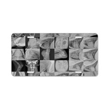 VR_cod_2011 Aluminum License Plate