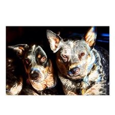 Cattle Dog Brothers Postcards (Package of 8)