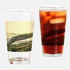 UnderTenThousandSunsMousepad Drinking Glass