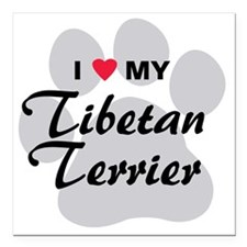 "tibetan-terrier Square Car Magnet 3"" x 3"""