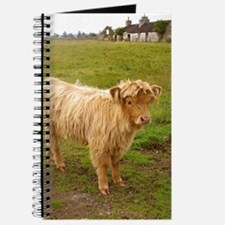 Hieland Coo Journal