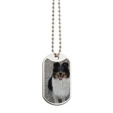 Jeep Lovely Tri Color Sheltie Dog Tags