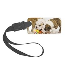 BD pups coin Luggage Tag