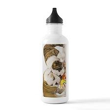 BD pups journal Water Bottle