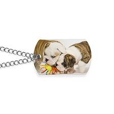 BD pups travel Dog Tags