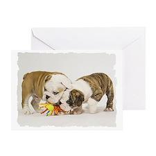 BD pups toy Greeting Card