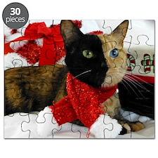 Venus Christmas scarf 2 Puzzle