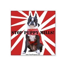 "10x10_StopPuppyMill Square Sticker 3"" x 3"""
