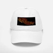 NCI_bacon Baseball Baseball Cap