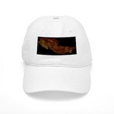 NCI_bacon Baseball Cap