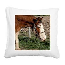 Clydesdale - Blazin TNT Square Canvas Pillow