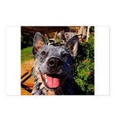 Happy ACD Postcards (Package of 8)