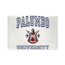 PALUMBO University Rectangle Magnet