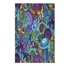 sealife Postcards (Package of 8)