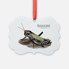 Horse Lubber Grasshopper Ornament