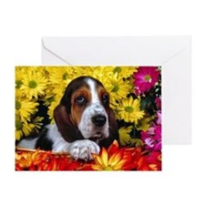 BH Boq post Greeting Card
