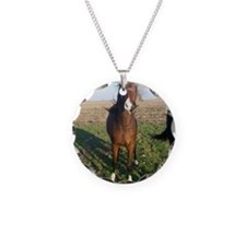 2yo colt Necklace