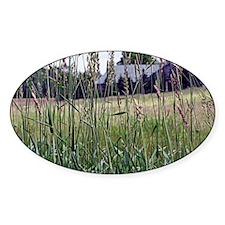 Through The Tall Grass Decal