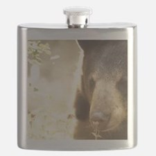 Sniffing Bear Flask