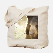 Sniffing Bear Tote Bag