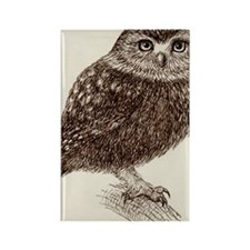 Baby Owl Rectangle Magnet