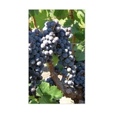 DHPurpGrapes1_7X5 Decal
