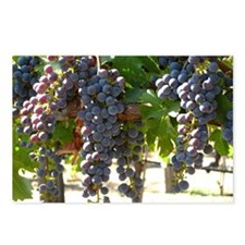 DHPurpGrapes3_11X14 Postcards (Package of 8)