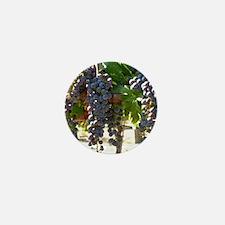 DHPurpGrapes3_11X14 Mini Button