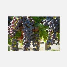 DHPurpGrapes3_11X14 Rectangle Magnet