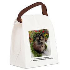 Freida%2c the throw away kitty Canvas Lunch Bag