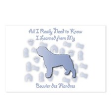 Learned Bouvier Postcards (Package of 8)
