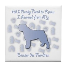 Learned Bouvier Tile Coaster