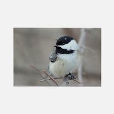 chickadee card Rectangle Magnet