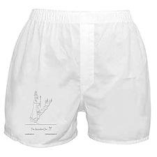 The Ascendant One Boxer Shorts