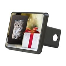 In-Sync Exotics Christmas  Hitch Cover