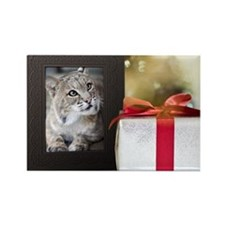 In-Sync Exotics Christmas Card -  Rectangle Magnet
