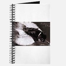 Pavlova's Dog Journal