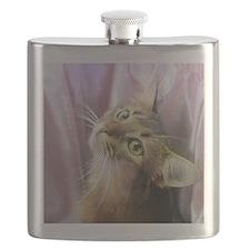cat portrait Flask