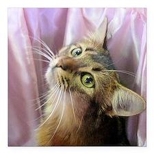 """cat portrait Square Car Magnet 3"""" x 3"""""""