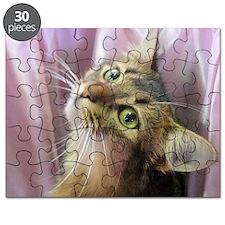 cat portrait Puzzle