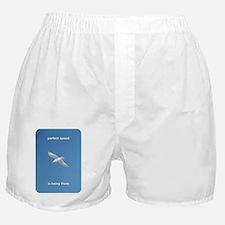 perfectSpeedIsBeingThere_2000x2000x20 Boxer Shorts