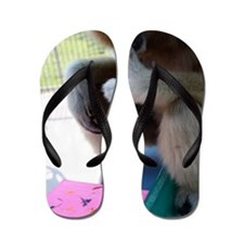 7%253A10%253A11 Flip Flops