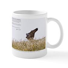 Jan-2011_05_28_45657 Mug
