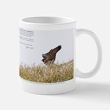Jan-2011_05_28_45657 Small Mugs